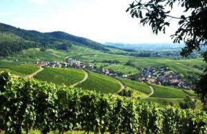 Баден-Баден Рейнская долина