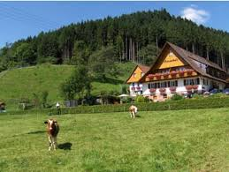 Дом в Шварцвальде